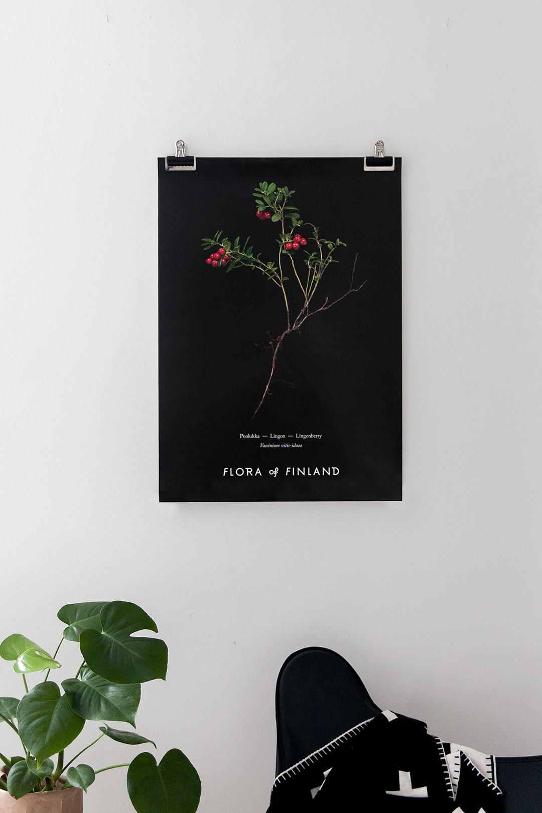 floraoffinland_04